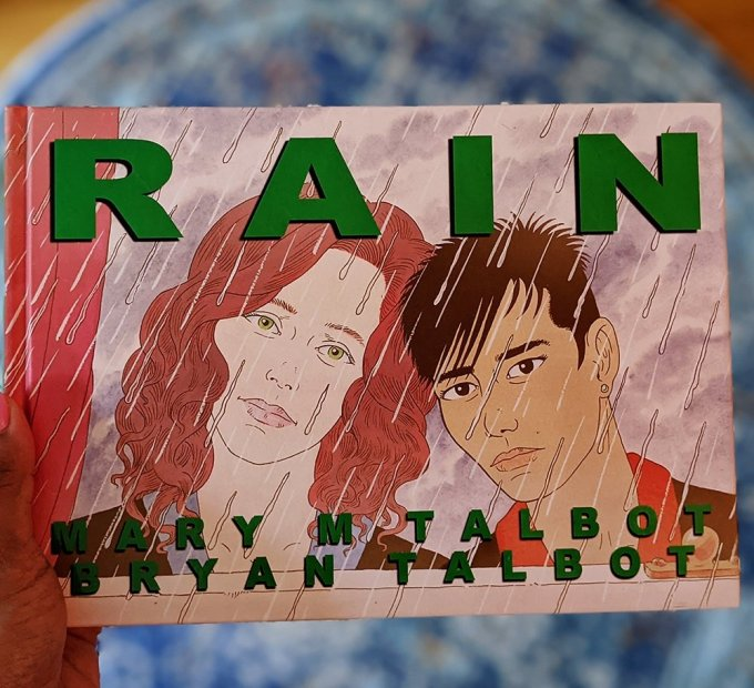 Cover art for the graphic novel, Rain. Written by Mary M Talbot and Bryan Talbot.